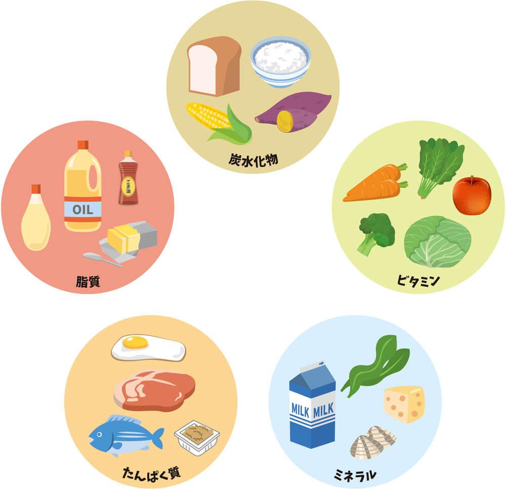 免疫力を高める食事について