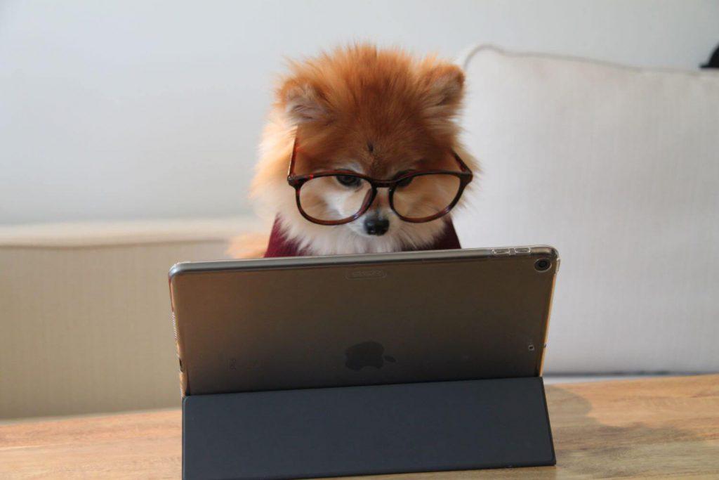 無料体験オンラインレッスンの予約~受講までをパソコンで完了している様子